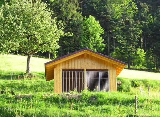 Urlaub mit Hund im Schwarzwald, geräumiger und gepflegter Hundezwinger