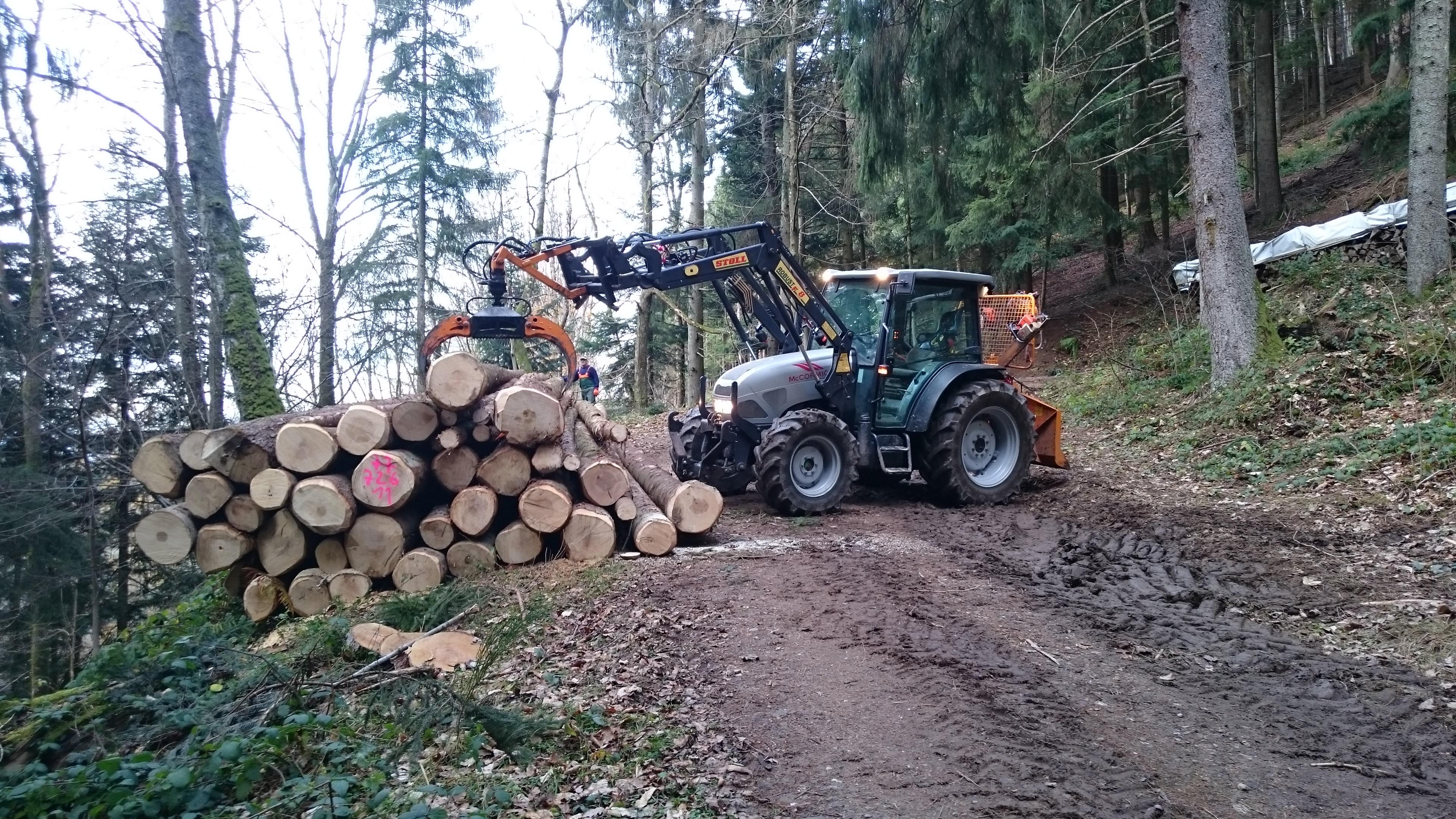 Wälderhof Waldwirtschaft